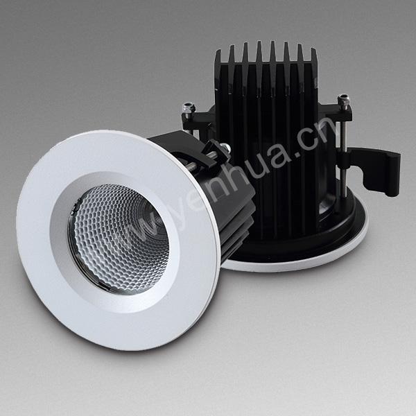 10W Waterproof LED Down Light