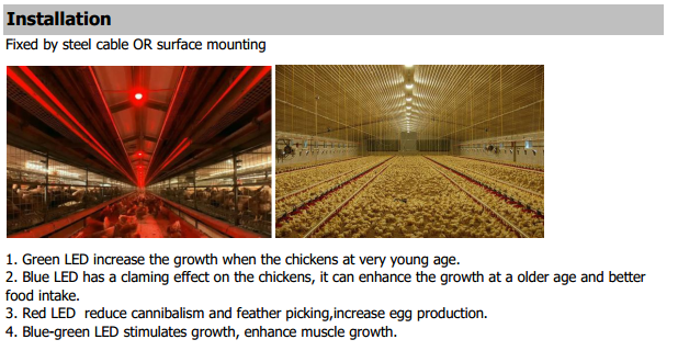 IP67 Waterproof LED Poultry Light 9W Installation