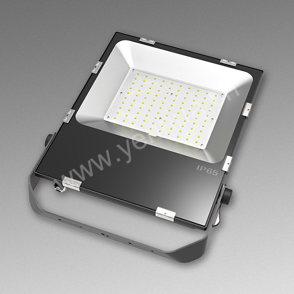 100W Waterproof IP65 LED Flood Light
